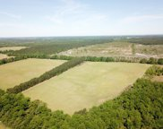 TBD South Dixie Road, Wagener image