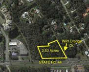 State Rd 44  Road, New Smyrna Beach image