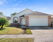 11723 Broad Oak Court, Orlando image