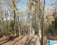 4366 Buzbee Road, Pinson image