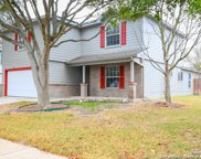 16310 Amberly Ct, Selma image