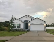1293 Water Willow Drive, Groveland image
