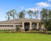 11739 Lake Lucaya Drive, Riverview image
