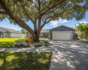 6602 Seafairer Drive, Tampa image