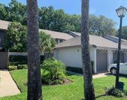 139 Olive Tree Circle, Altamonte Springs image