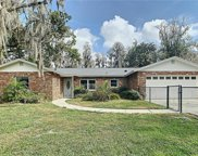 18313 Tomlinson Drive, Lutz image