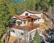 31468 Kings Valley, Conifer image