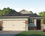 262 Caryota Court, New Smyrna Beach image