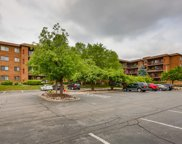51 Old Oak Drive Unit #416, Buffalo Grove image