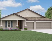 10856 Sage Canyon Drive, Riverview image