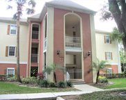 6102 Bayhill Lane Unit 6102, Longwood image