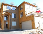 3106 Buttercup Lane, Evergreen image