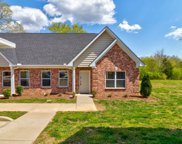 7130 Fernvale Springs Way, Fairview image