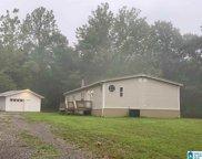 1875 Oak Hill Drive, Springville image