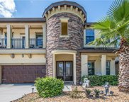 10913 Charmwood Drive, Riverview image