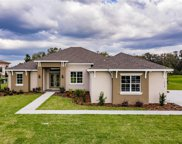 10908 Brice Tree Ct, Lithia image
