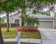 16318 Armstrong Place, Tampa image