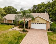 4653 Sloewood Court, Mount Dora image