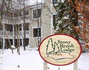 24 Stony Brook, Glen Arbor image