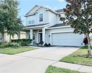 30640 Palmerston Place, Wesley Chapel image
