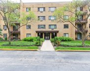 6630 South Brainard Avenue Unit 307, Countryside image