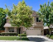 9401  California Oak, Patterson image