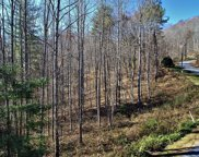Lot 31 Forest Valley, Sylva image