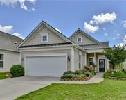 22157  Tern Court, Indian Land image