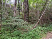 Sycamore St Lot 57, Sevierville image