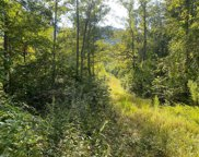 00 Grissel Tail Road, Traphill image