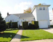 6 Shelly Ct, Plainview image