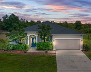 5352 Song Sparrow Court, Lakeland image