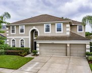 10230 Meadow Crossing Drive, Tampa image