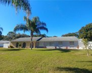 7218 Flowerfield Drive, Tampa image