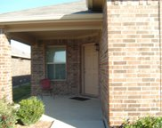 324 Cameron Hill Point, Fort Worth image