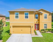 13228 Waterford Castle Drive, Dade City image