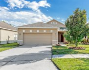 1438 Willow Branch Drive, Orlando image