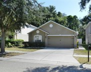 10410 River Bream Drive, Riverview image