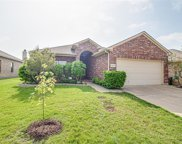 14312 Polo Ranch Street, Fort Worth image