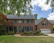 124 Stoney Point Lane, Chapin image