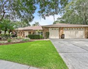 12411 Stillwater Terrace Drive, Tampa image