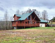1035 W Millers Cove Rd, Walland image