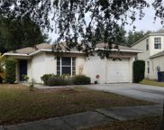 8413 Quarter Horse Drive, Riverview image