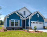 205 Yellow Rail St., Murrells Inlet image
