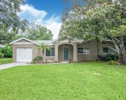 10917 Village Green Avenue, Seminole image