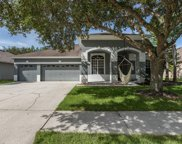 4812 Tea Rose Court, Lutz image