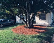 820 Narcissus Avenue, Holly Hill image