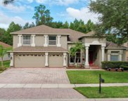 17320 Emerald Chase Drive, Tampa image