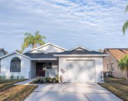 12810 Millridge Forest Street, Tampa image