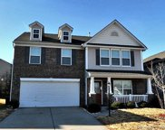 13823 Allison Forest  Trail, Charlotte image